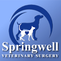 Springwell Veterinary Surgery